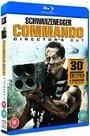 Commando: Director