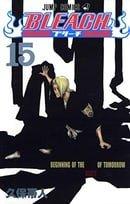 Bleach, Volume 15 (Japanese Edition)