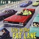 Life in Fat Lane: Fat Music 4 (Sampler)