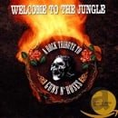 Welcome to the Jungle: A Rock Tribute to Guns N