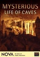 Mysterious Life of Caves - NOVA