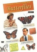 Butterflies: Series 3