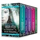 Iron Fey Series Volume 1: The Iron King\Winter's Passage\The Iron Daughter\The Iron Queen\Summer's C