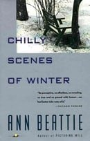 Chilly Scenes of Winter (Vintage Contemporaries (Paperback))