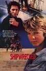 Shipwrecked (1990)