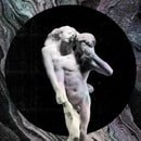 It's Never Over (Oh Orpheus) (Reflektor, 2013)
