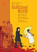 Harold and Maude - Criterion Collection