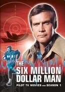 The Six Million Dollar Man                                  (1974-1978)