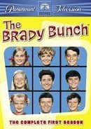 The Brady Bunch                                  (1969-1974)