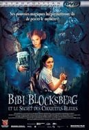 Bibi Blocksberg And The Secret Of The Blue Owls