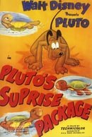 Pluto's Surprise Package