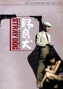 Stray Dog (The Criterion Collection)