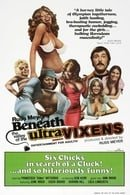 Beneath the Valley of the Ultra-Vixens (1979)