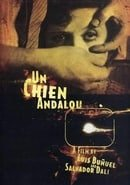 Chien Andalou  [Region 1] [US Import] [NTSC]