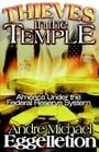 Thieves in the Temple: America Under the Federal Reserve System