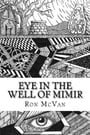 Eye in The Well of Mimir