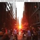 The Chemistry of Common Life [Vinyl]