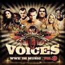Voices WWE The Music, Vol. 9